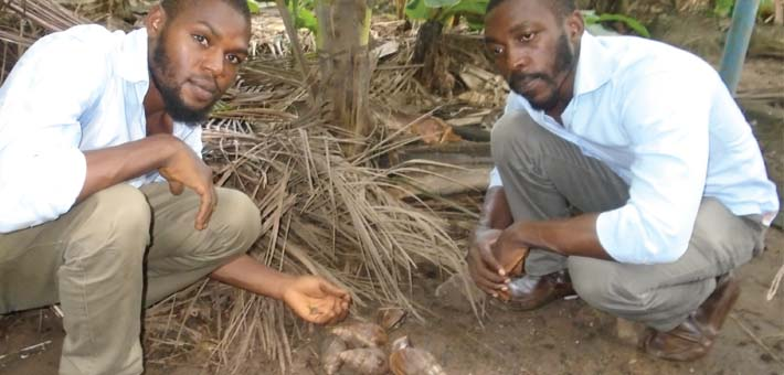 Rearing snail is simple and cheap –Okhiria, Director, SnailCare Farm