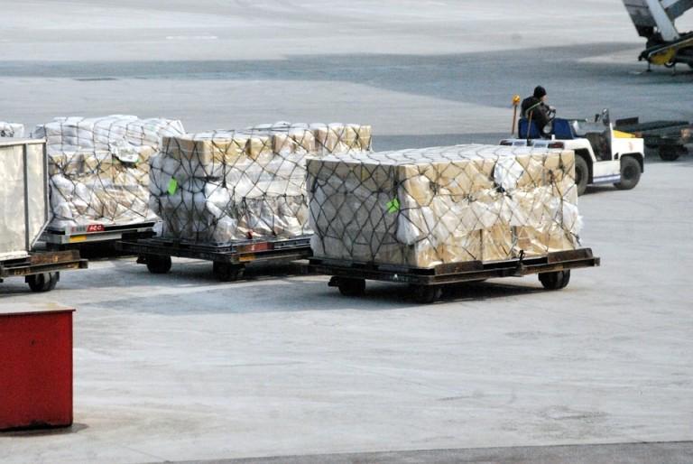 The fundamentals to Foodstuffs Exportation